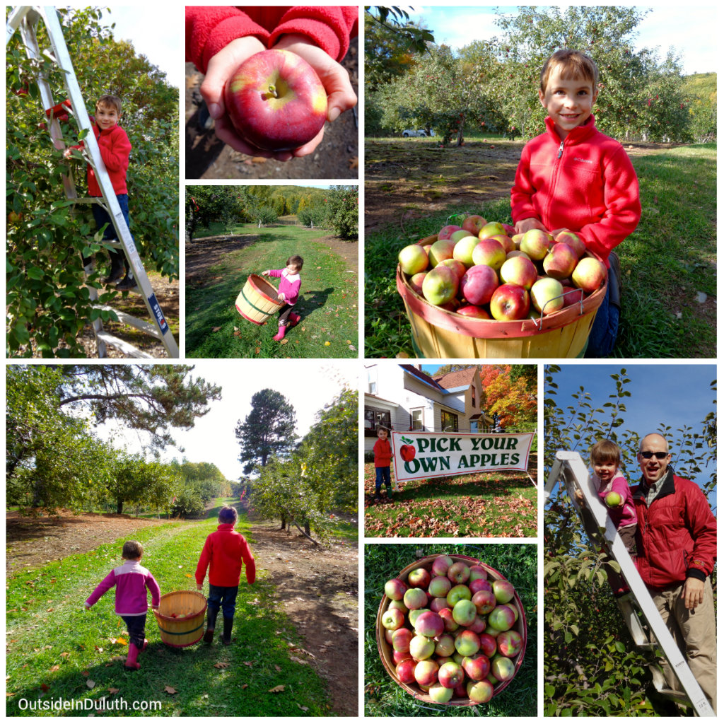 Apple Picking: Fall Fun For The Family Just Beyond Duluth